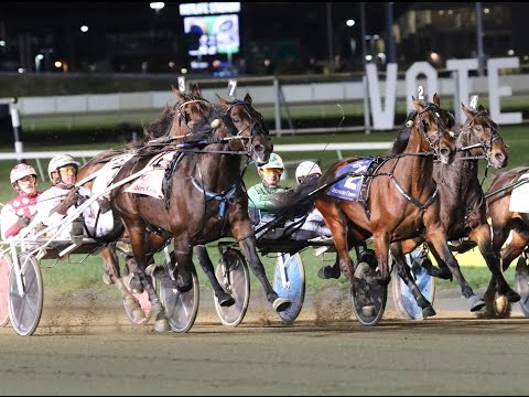 2016 Breeders Crown Open Trot-Flanagan Memory