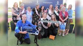 Hazelwood Terry Wins Star Sports 2018 Champion Hurdle Heat One on 26th May 2018 (Official Video)
