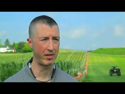 BlackBerry Bottom Farm Interview