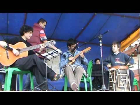 Dos Palomitas (Huayno) - Julio Martinez Arteaga