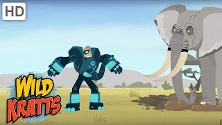 Wild Kratts - Rhino and Elephant Creature Challenge | Kids Videos