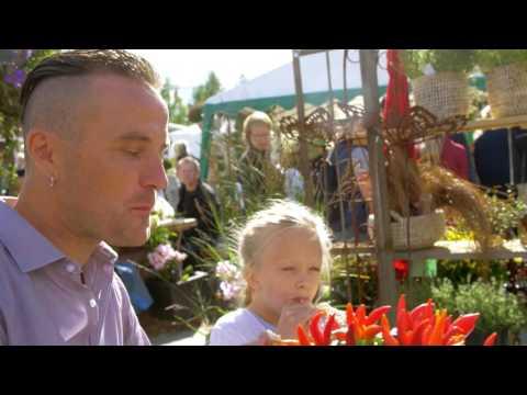 Stora Nolia 5-13 aug i Umeå. Årets folkfest