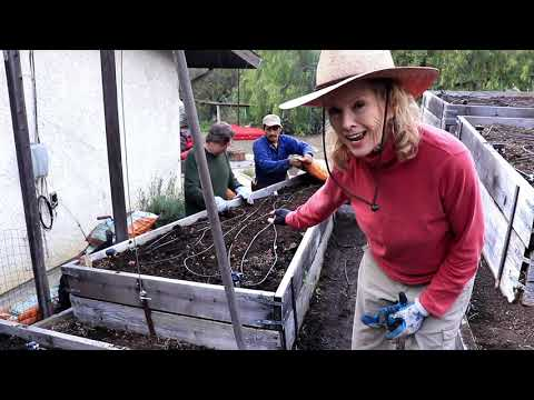 HILLSIDE Garden MAKEOVER | Topanga Canyon - Part 2, Prepping the Raised Beds
