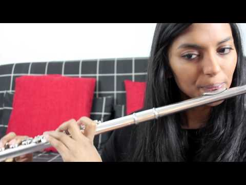 Baixar Story of my life - One Direction Flute Cover