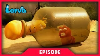 LARVA - BOTTLE TRAP | Cartoon Movie | Cartoons For Children | Larva Cartoon | LARVA Official
