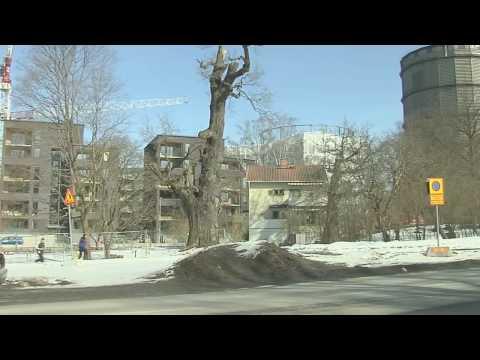 C/O City skapar naturlig nytta i staden