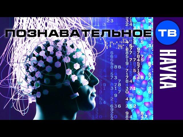 Сергей Савельев: Управление мозгом человека