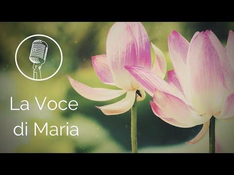 La Voce di Maria (Autores: Roberta Torresi y Paolo Bisonni)