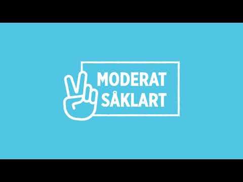 Moderat Såklart! - Vallåt 2018