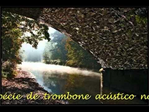 Beethoven - Sonata ao Luar