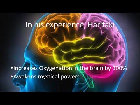 Benefits of Haritaki also known as Organic Terminalia Chebula