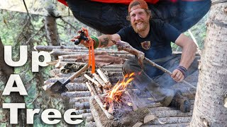Slingshot Catch and Cook Up A Tree Day 29 of 30 Day Survival Challenge Canadian Rockies
