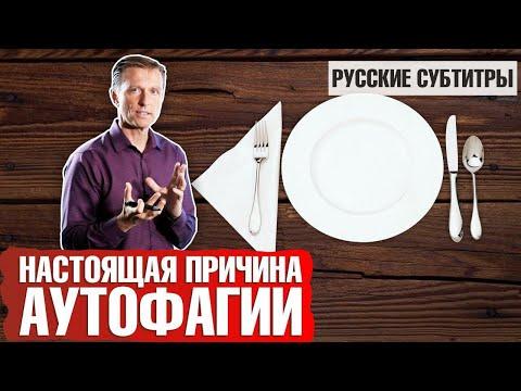Зачем НА САМОМ ДЕЛЕ нужна аутофагия? (русские субтитры) photo