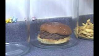 The Decomposition Of McDonald's Burgers And Fries.