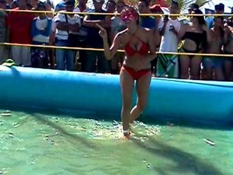 Peleas Mujeres Bikini 105