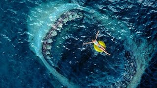 The Meg - Megalodon Shark Beach Attack Scene (2018) Movie Clip