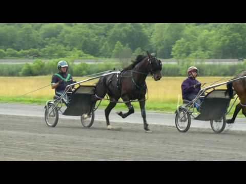 Racing Hill -- 2016 Max C. Hempt Memorial Favorite