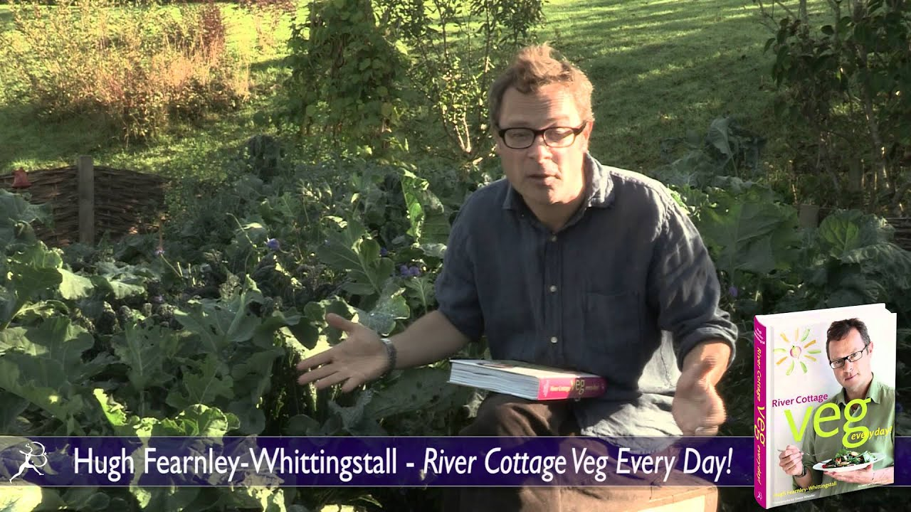 Hugh Fearnley Whittingstall River Cottage Veg Every Day