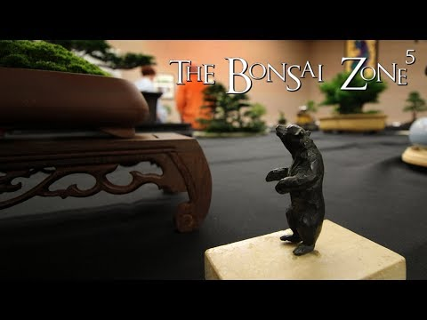 The KW Bonsai Show, The Bonsai Zone, Sept 2018