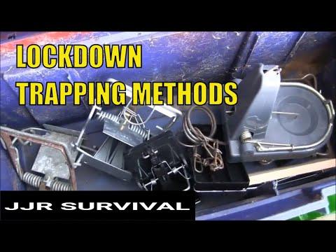 Lockdown Garden Trapping Methods