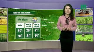 VTC14 | Thời tiết Nông vụ ngày 23/04/2017 | Bắc Bộ đêm nay và sáng mai trời vẫn mát mẻ  24- 26 độ