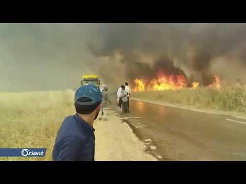منظمة إنسانية سورية تقدم مساعدتها لإطفاء حرائق الحسكة وميليشيا قسد ترفض - سوريا