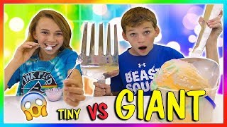TINY THINGS VS GIANT THINGS | SWITCH UP | We Are The Davises