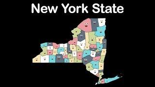 New York State/New York Counties/New York State Counties