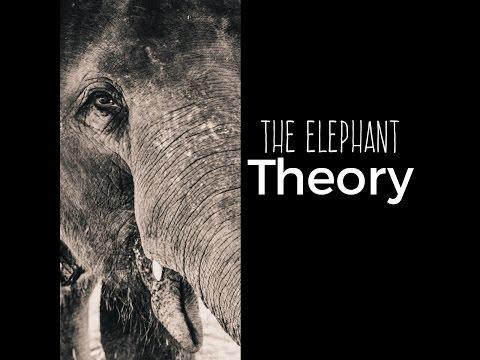 The Elephant Theory