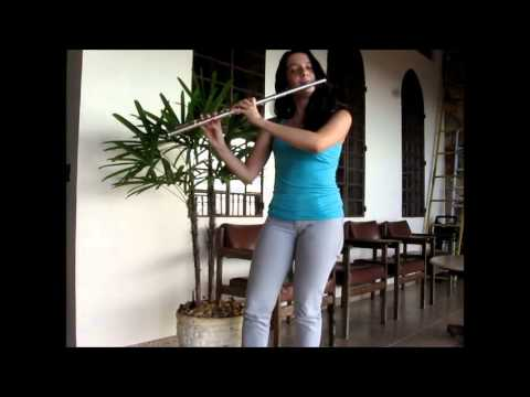 Agnus Dei - Flauta Transversal solo (Instrumental)