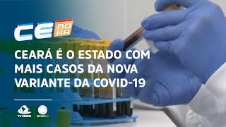Ceará é o estado com mais casos da nova variante da Covid-19
