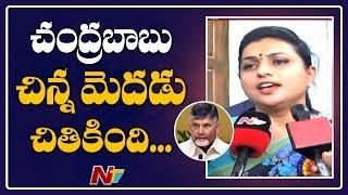 MLA Roja Strong Comments On Chandrababu Naidu..