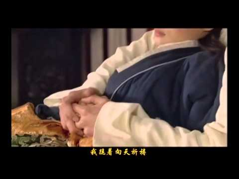 《甄嬛傳》網友自製迪克牛仔《放手去愛》版本