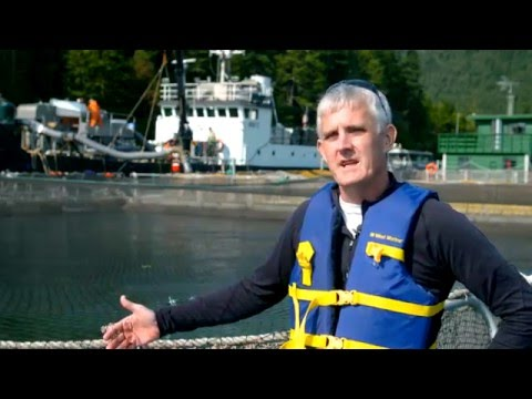 WaGrown Water S3E8: Icicle Seafoods