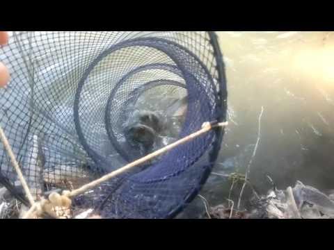 рыбная ловля на реке бурная