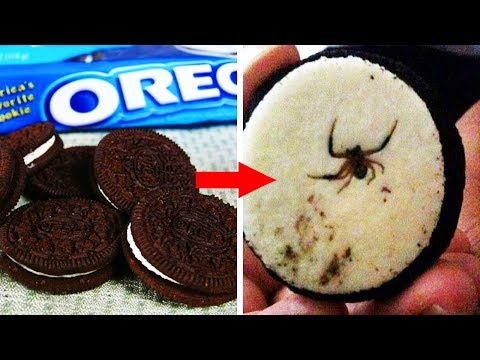 Shocking Things Found In Your Favourite Foods