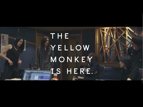 THE YELLOW MONKEY / ロザーナ