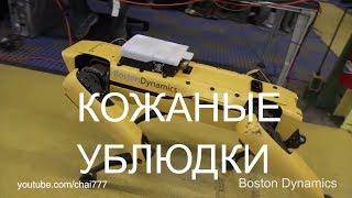⚡Boston Dynamics русская озвучка 21 😁😁😁 Мат