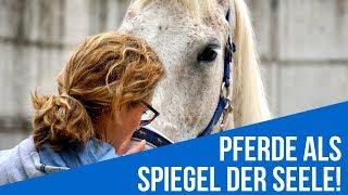 Pferde als Spiegel! - TU WAS DU LIEBST!