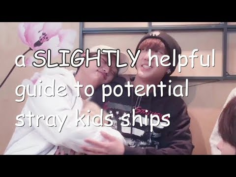 a SLIGHTLY helpful guide to potential stray kids ships