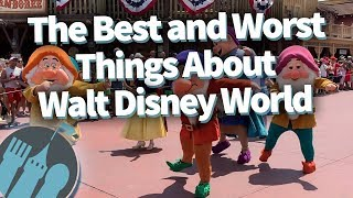 The Best and Worst Things About Walt Disney World!