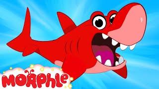 My Pet Shark - My Magic Pet Morphle