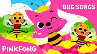 Bugs, Bugs, Bugs | Bug Songs | PINKFONG Songs