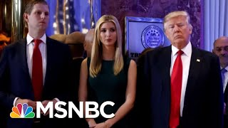 Donald Trump Family Author: Donald Trump Jr. 'Front And Center' In Probes | The Beat With Ari Melber