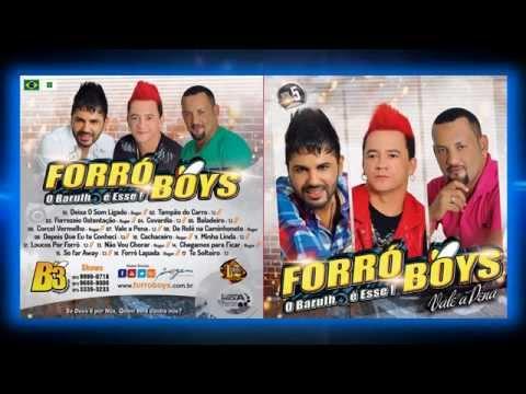 Baixar Forró Boys Vol. 5 - 09 Depois Que Eu Te Conheci 2014