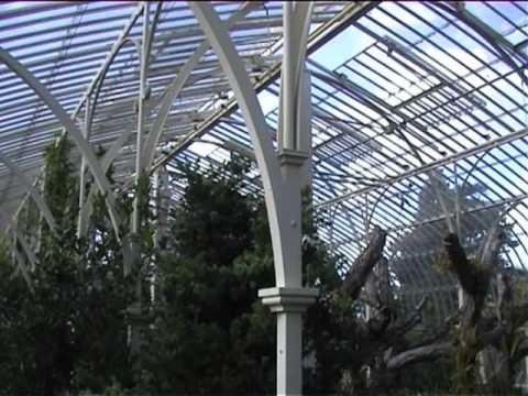 Curvilinear Range, Botanic Gardens, Dublin
