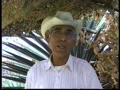 San Agustin Amatengo, documental
