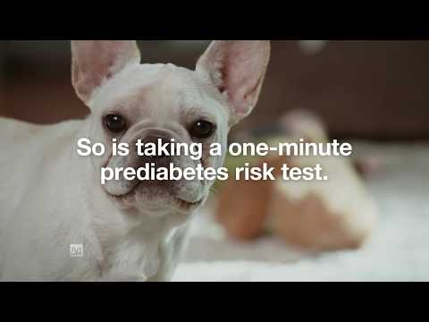 Risk Test Puppies :60 | Type 2 Diabetes Prevention | Ad Council