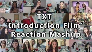 "TXT (투모로우바이투게더) 'Introduction Film - What do you do?' ""Reaction Mashup"""