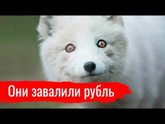 Они завалили рубль